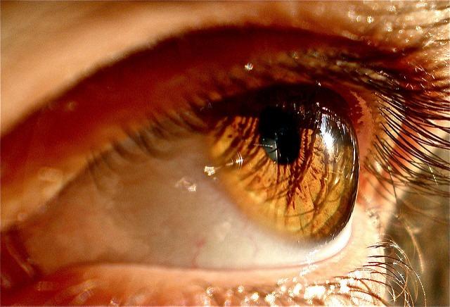 Ojos Color Miel – Cap 0.0